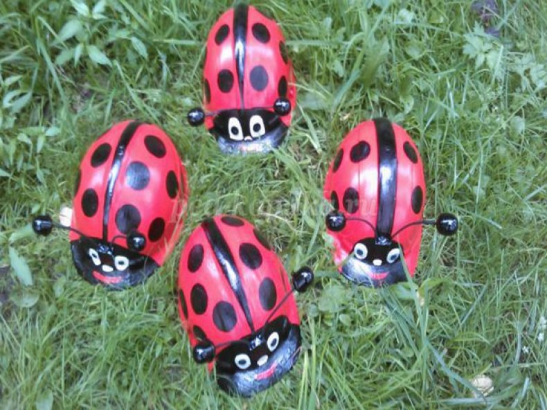 Ladybirds of Helmets